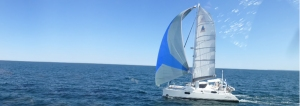 Charter AlyKat for your Newport sail
