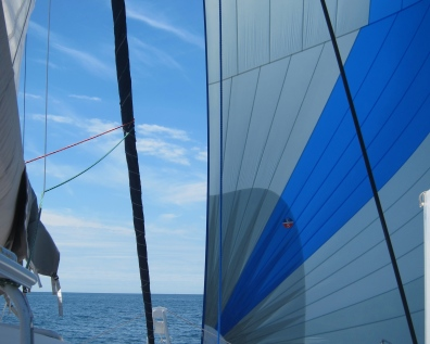Wind in AlyKat's sails!
