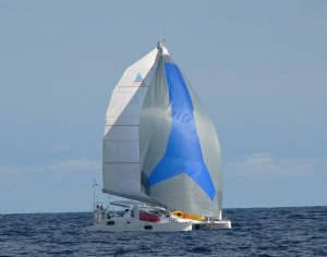 Catamaran sailing with spinnaker