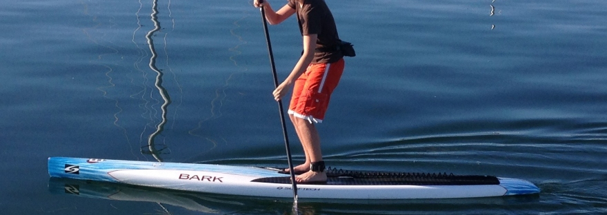 Milo tries out Kia's paddle board