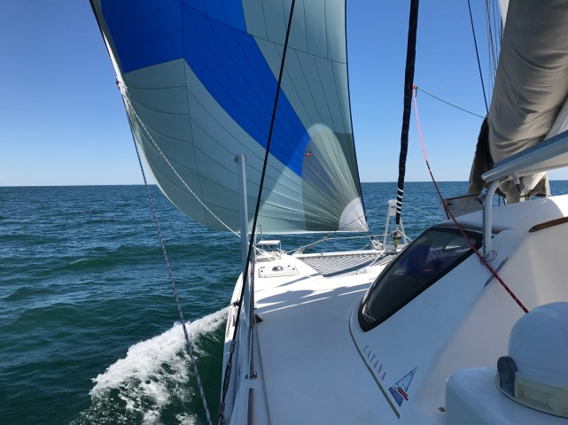 Asymmetrical spinnaker at work