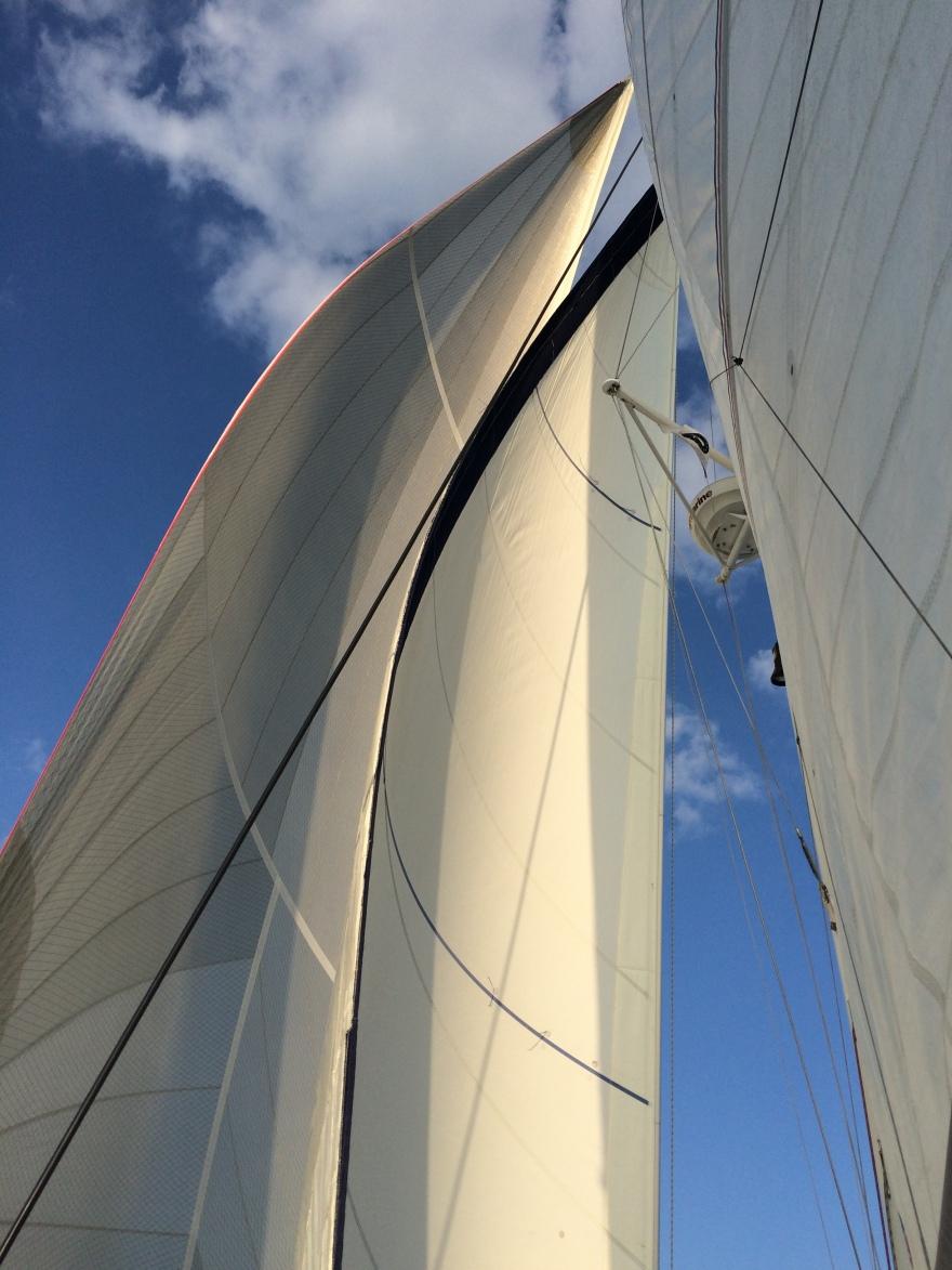 Sun on the catamaran sails