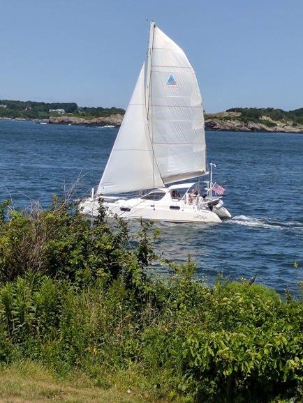Catamaran at sail