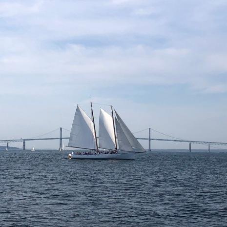 Bridge and sails